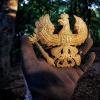 XP Deus team Romania latest trip report