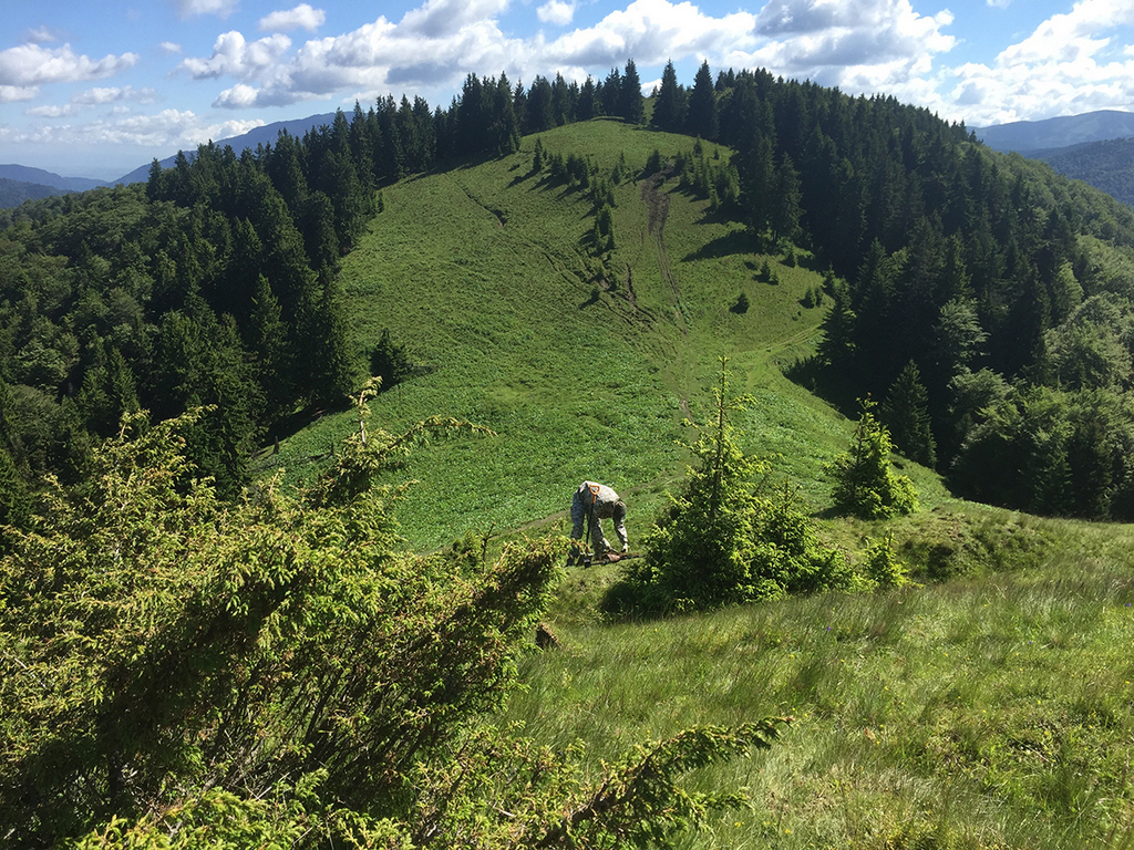 metal-detecting-romania